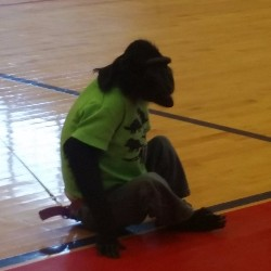 Jungle Adventures Comes to Central High School
